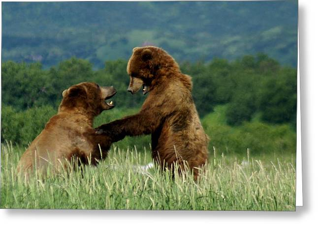 Frolicking Grizzly Bears Greeting Card by Patricia Twardzik