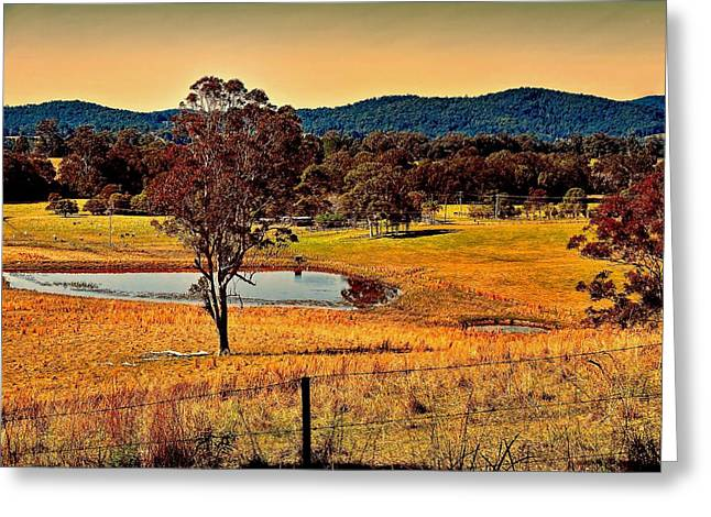 Greeting Card featuring the photograph From A Distance by Wallaroo Images