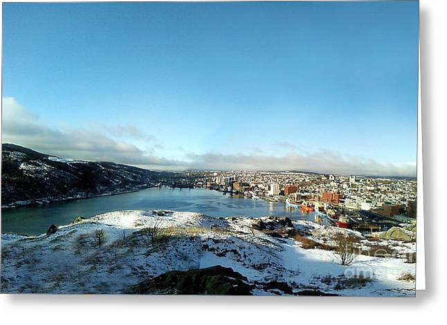 From Signal Hill Greeting Card by Barbara Griffin