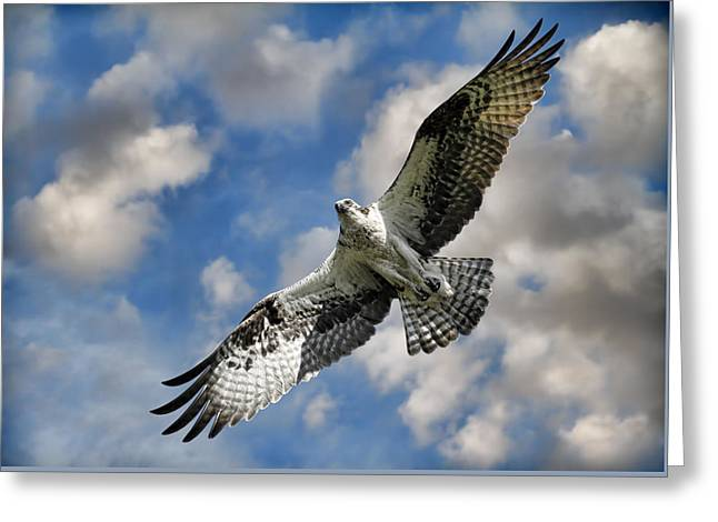 From The Clouds Greeting Card by Steve McKinzie
