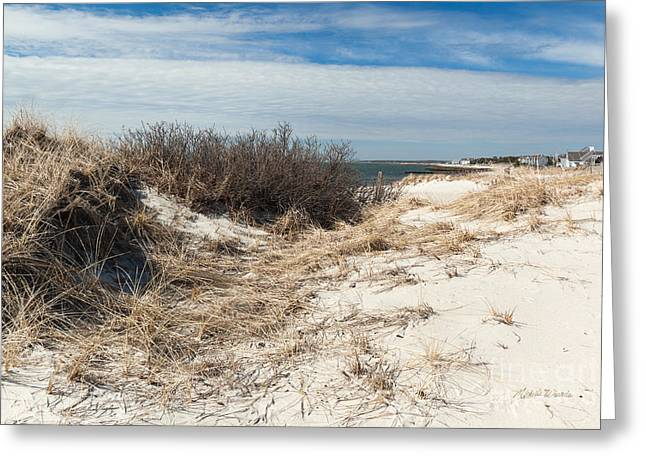 From The Dunes Greeting Card