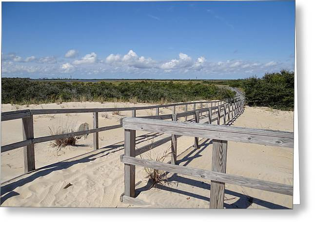 From The Dunes To The Marsh Greeting Card by David Nichols