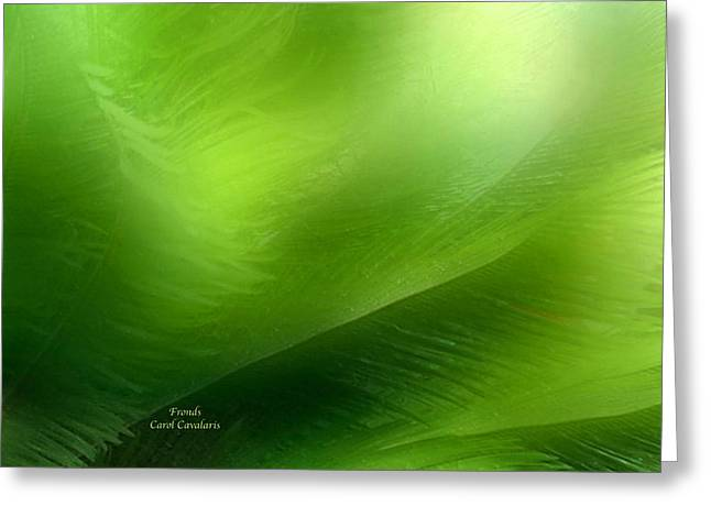 Fronds Greeting Card by Carol Cavalaris