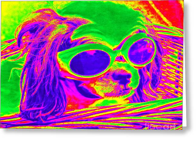 Front Seat Driver Pop Art - Puppy Mania Greeting Card by Ella Kaye Dickey
