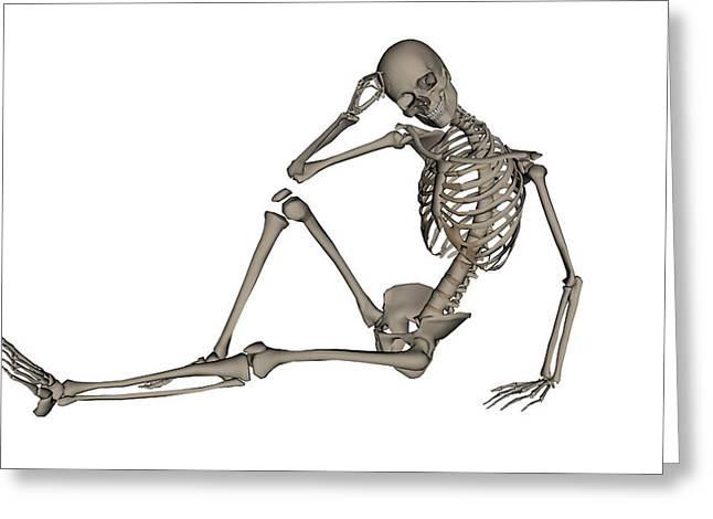 Front View Of A Human Skeleton Posing Greeting Card by Elena Duvernay