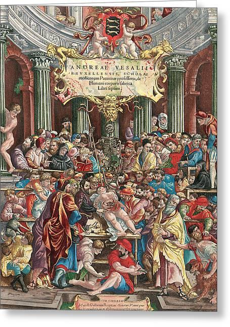 Frontispiece To De Humani Corporis Fabrica Libri Septem Greeting Card by Venetian School