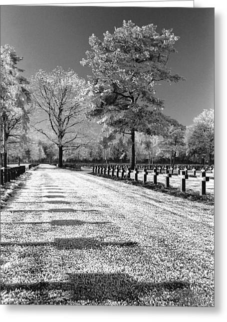 Frost At Cemetery Greeting Card