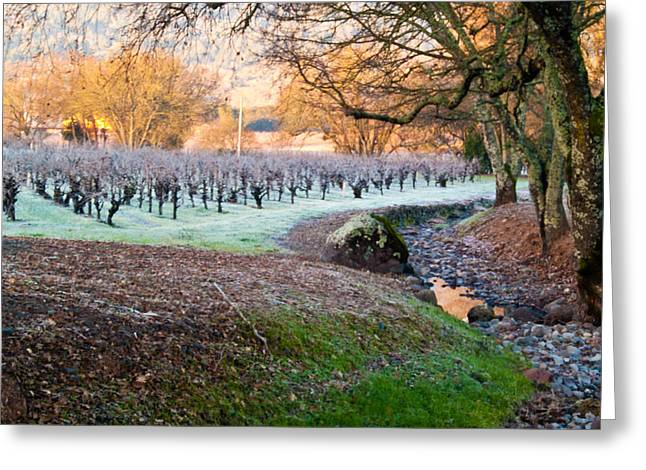 Frost In The Valley Greeting Card