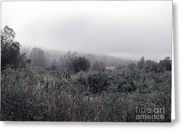 Frost On The Field Greeting Card by Linda Marcille