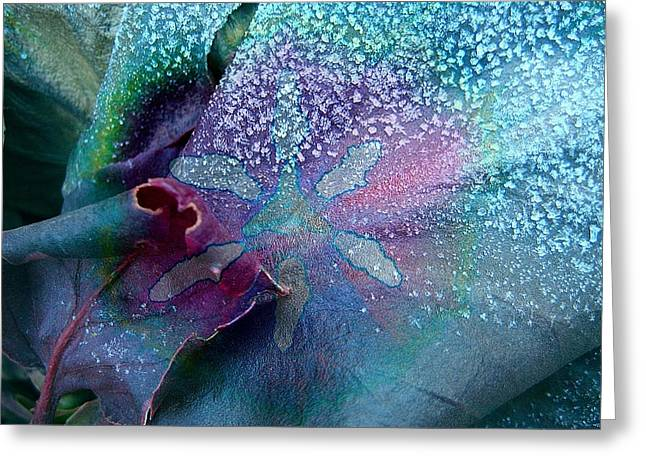 Frost On Turquoise Greeting Card by Shirley Sirois