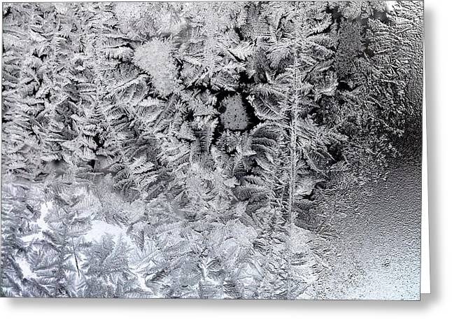 Frost Windowpane In Maine Number One Greeting Card by Patricia E Sundik