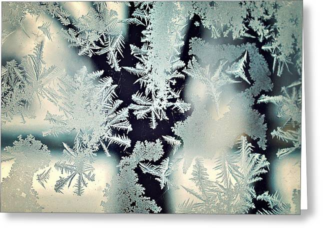 Frostbitten Window Greeting Card by Carrie Ann Grippo-Pike