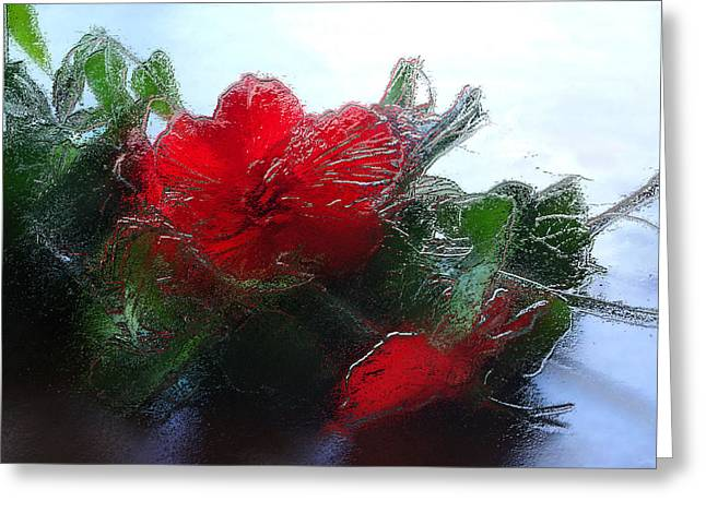 Frosted Hibiscus 1 Greeting Card