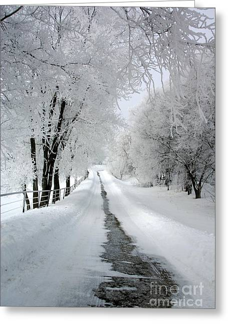 The Long Frosted Road Greeting Card
