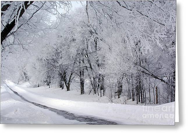Frosted Trees Path Greeting Card