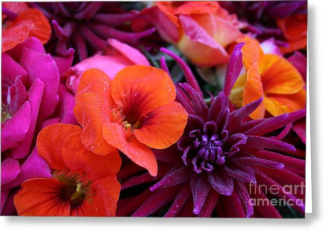 Greeting Card featuring the photograph Dewy Blooms by Jeanette French
