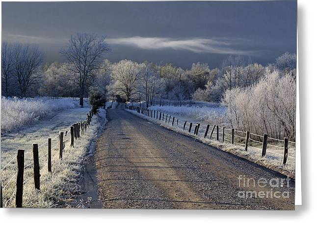 Frosty Cades Cove Hdr Greeting Card by Douglas Stucky