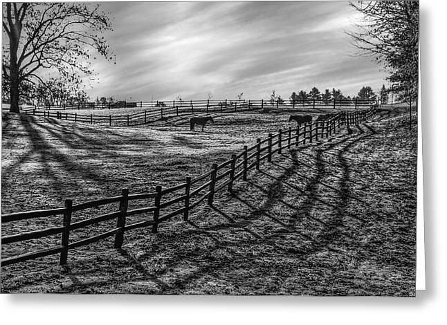 Frosty Corral At Dawn Greeting Card