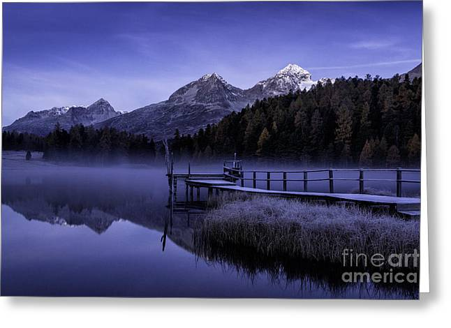 Frosty Dock Greeting Card by Timothy Hacker