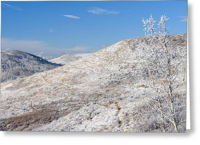 Frosty Foothills Greeting Card