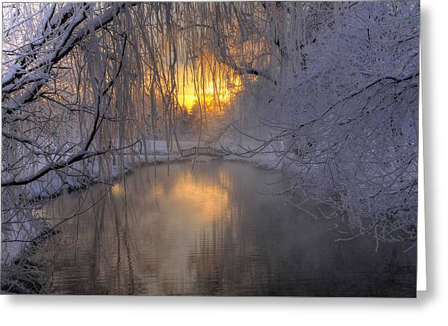 Frosty Morn 2 Greeting Card by Dan Myers