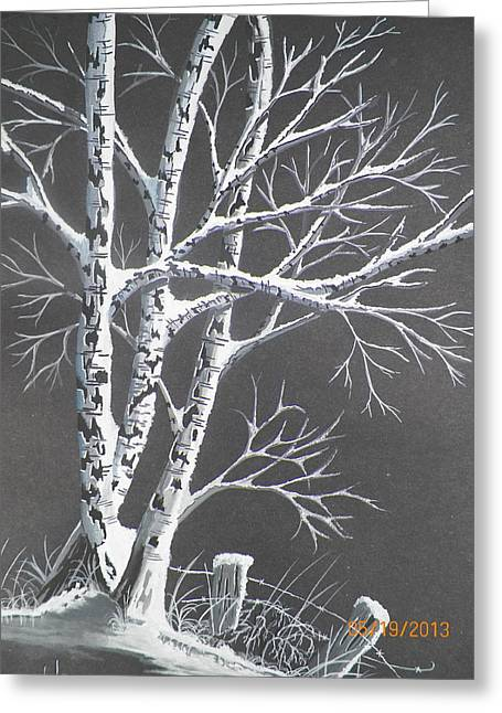 Frosty Night Greeting Card by Wolfgang Pranke
