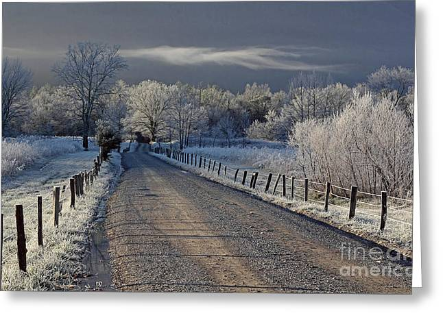 Frosty Sparks Lane Greeting Card by Douglas Stucky