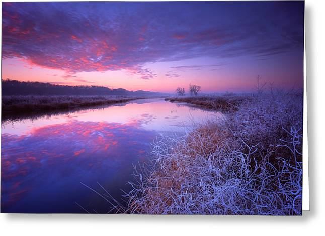 Frosty Sunrise Greeting Card by Ray Mathis