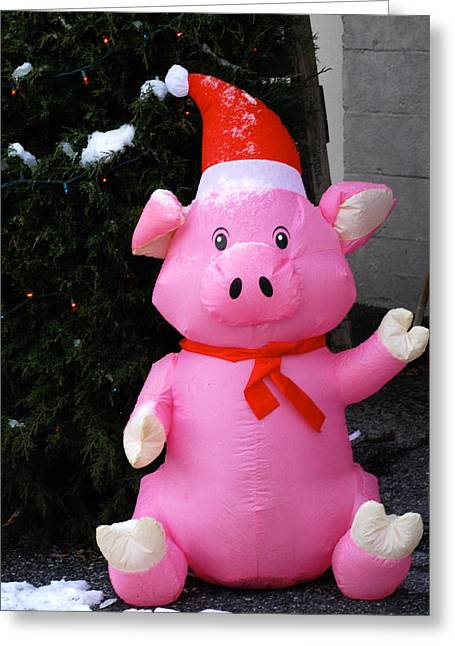 Frosty The Pig Greeting Card