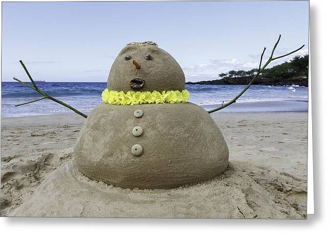Frosty The Sandman Greeting Card by Denise Bird