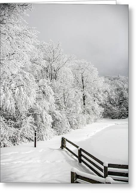 Frozen Afternoon Greeting Card by John Haldane