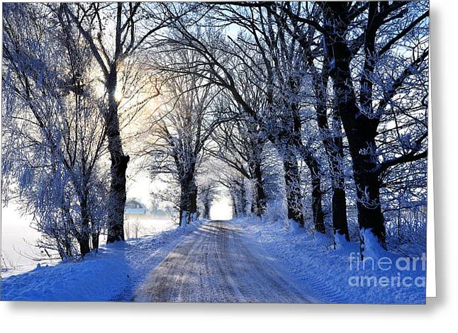 Greeting Card featuring the photograph Frozen Alley by Kennerth and Birgitta Kullman