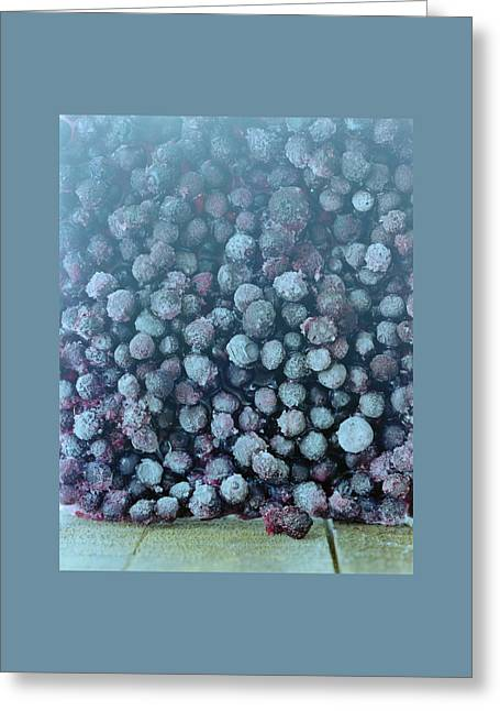 Frozen Blueberries Greeting Card by Romulo Yanes