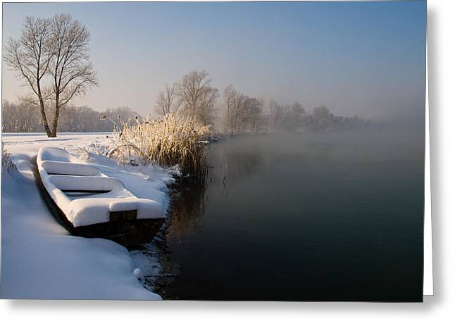 Frozen Boat Greeting Card by Davorin Mance