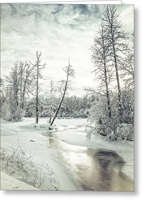 Frozen Creek At Sunset Greeting Card