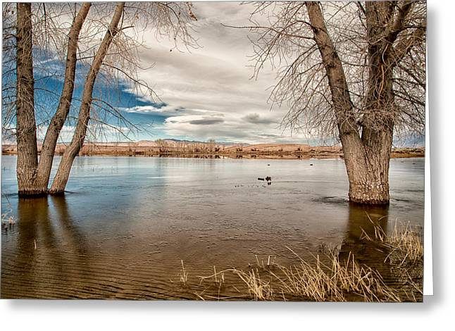 Frozen Farmers Pond Greeting Card