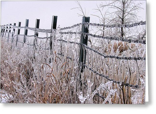 Frozen In Time Greeting Card by JC Findley