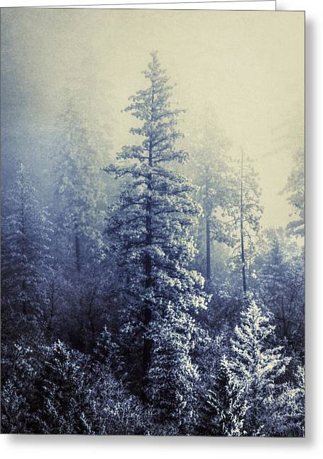 Frozen In Time Greeting Card by Melanie Lankford Photography