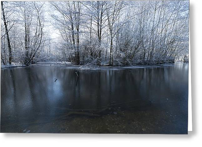 Frozen In Time Greeting Card by Svetlana Sewell