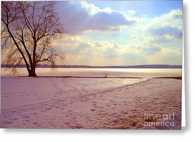 Frozen Lake II Greeting Card by Silvie Kendall