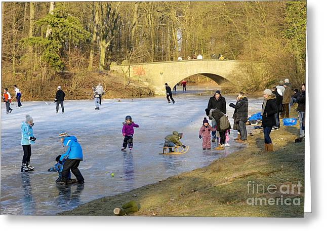 Frozen Lake Krefeld Germany Greeting Card by David Davies