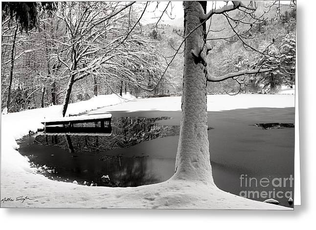 Frozen Pond 2014 Greeting Card