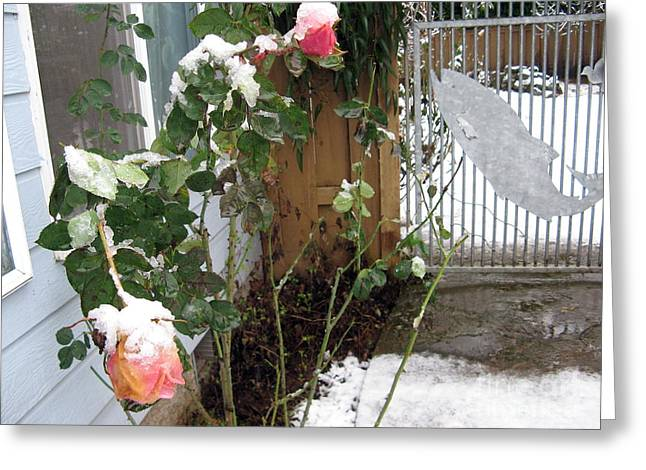Frozen Rose Greeting Card by Marlene Rose Besso