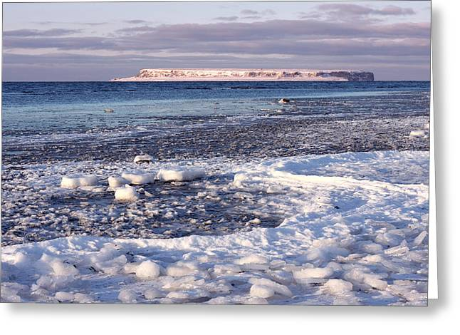 Frozen Shore Greeting Card