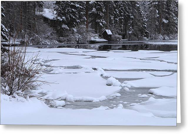 Frozen Silence  Greeting Card by Duncan Selby