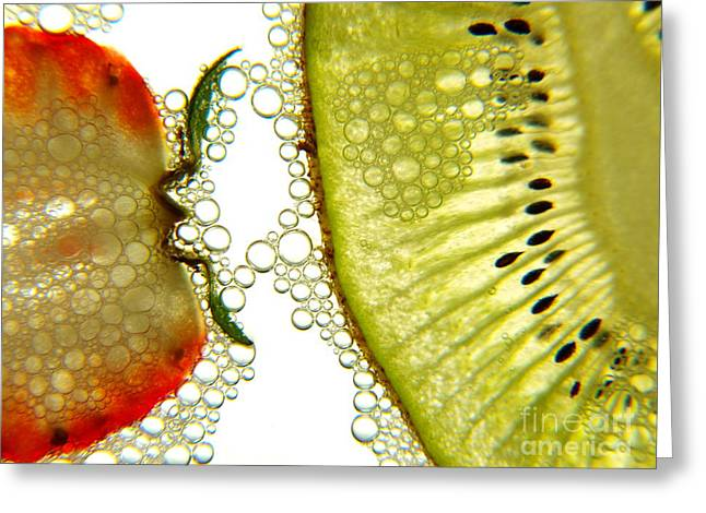 Fruit And Bubbles Greeting Card