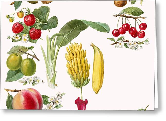 Fruits Greeting Card by English School
