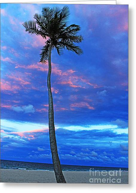 Ft Lauderdale Palm Greeting Card