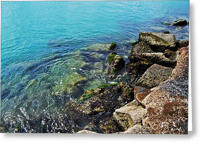 Ft Pierce Waters Greeting Card by Rachael M