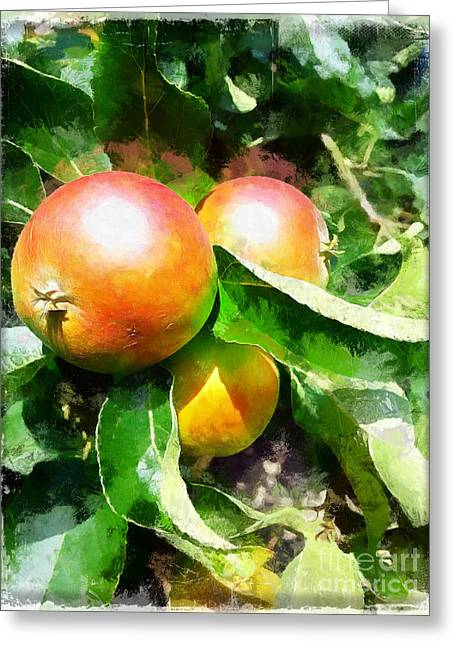 Fugly Manor Apples Greeting Card